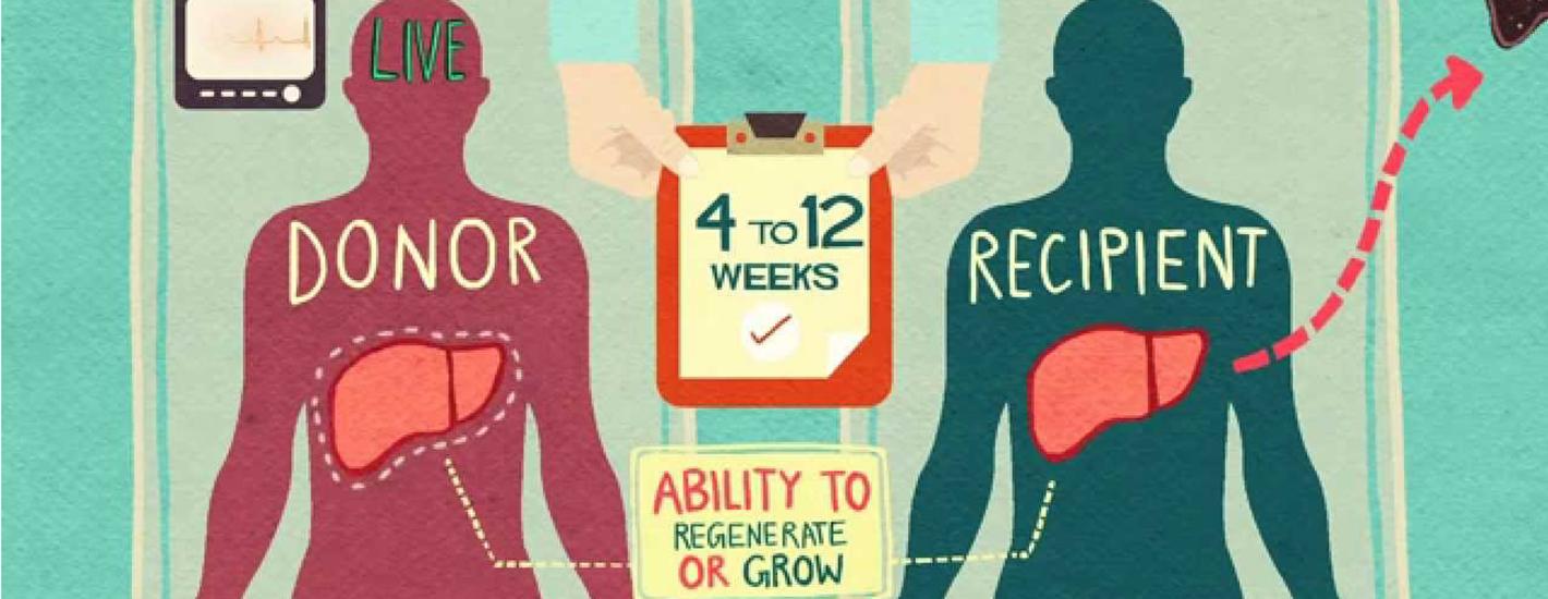 URGENT! Colleague's partner needs partial liver donation!